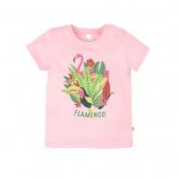 Футболка Фламинго 259б-161р